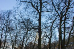 Bad-Kissingen-Winter-09