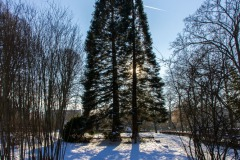 Bad-Kissingen-Winter-17