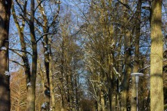 Bad-Kissingen-Winter-18