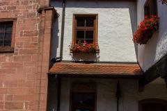 Burg-Rieneck-11