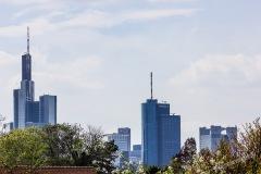 Frankfurt-Zoo-016