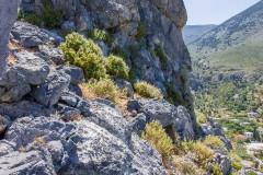 Kalymnos-Tag-3-5