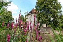 Schloss-Kleinbardorf-009